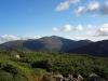 AT view of Mt. Washington