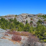 8-White-Dot-Trail-above-treeline