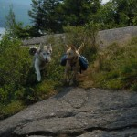 Major-Brook-Trail